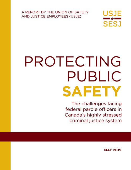Picture of Report Cover - Protecting Public Safety
